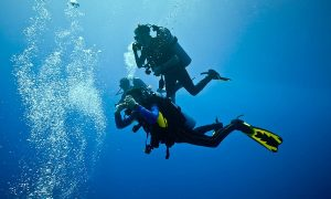 instructor de buceo profesional