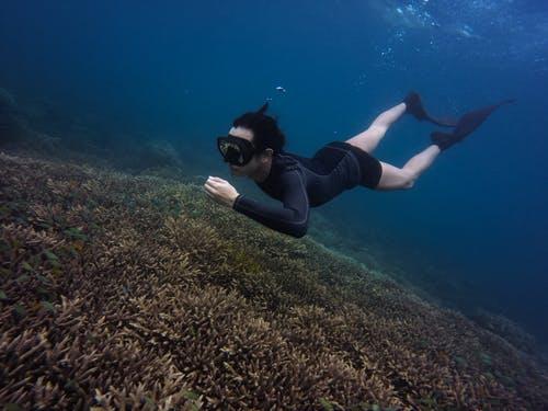 Adultos Unisex Negro Una Talla Snorkeling,Pesca Submarina y Buceo Cressi Island Snorkel Tubo Respiradores para Apnea