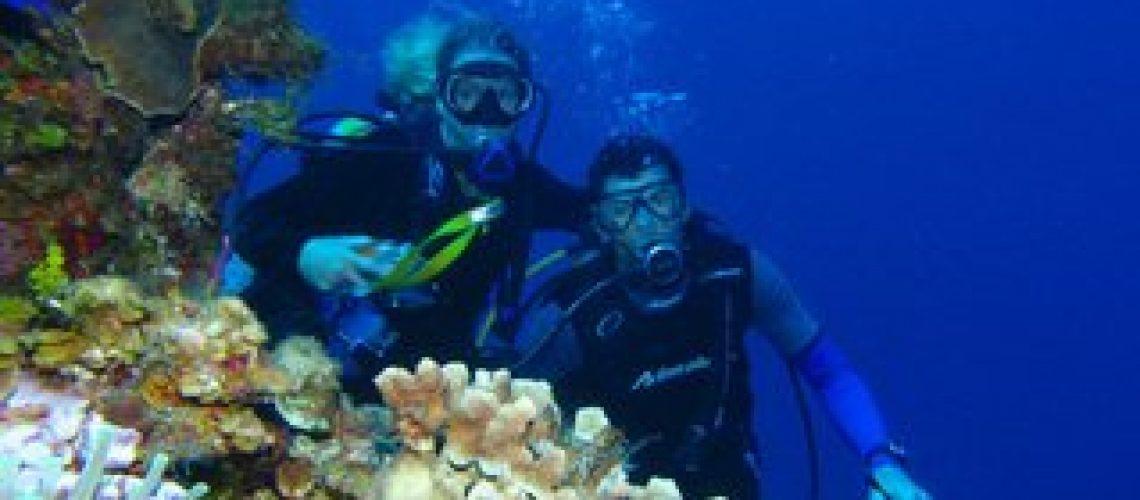 documentales marinos